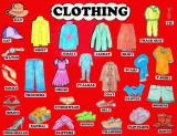 Английские слова/лексика на тему «Женская одежда» — Womenswear/Women's clothing